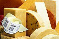 Печать этикеток, штрих-кодов, цеников при фасовке твердого сыра